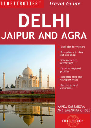 Delhi Travel Guide eBook